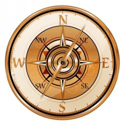 Personalized Coach and Game Plan Compass