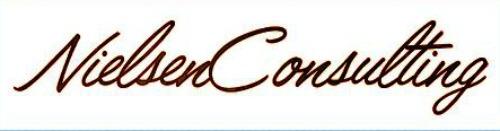 Nielsen Consulting Logo